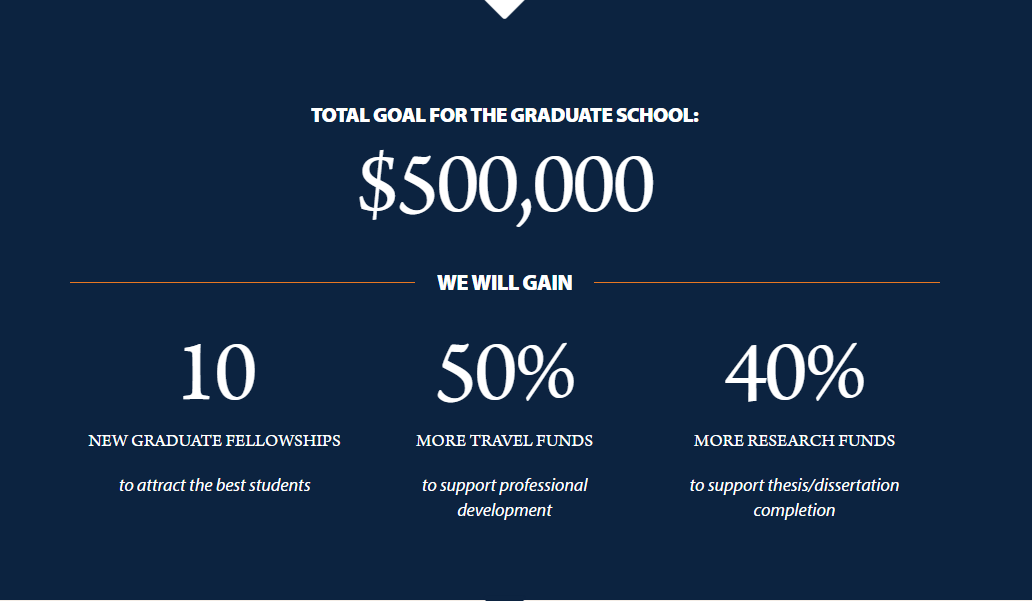 Campaign goal 500K, 10 fellowships, 50% more travel funds, 40% more research funds