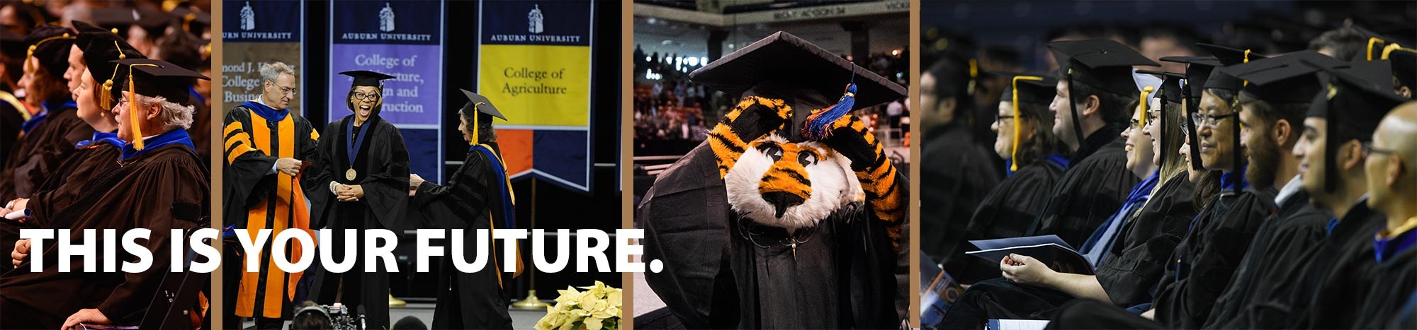 Scenes from graduation, big smiles on graduate faces, and Aubie