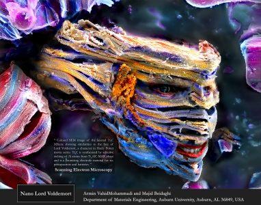 Armin VahidMohammadi depiction of an engineered nanomaterial